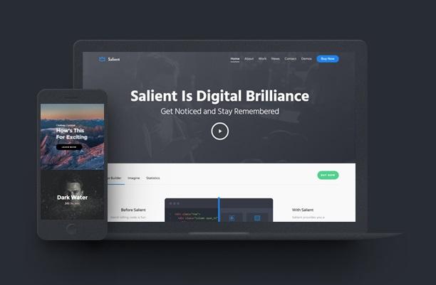 Salient - премиум тема для WordPress